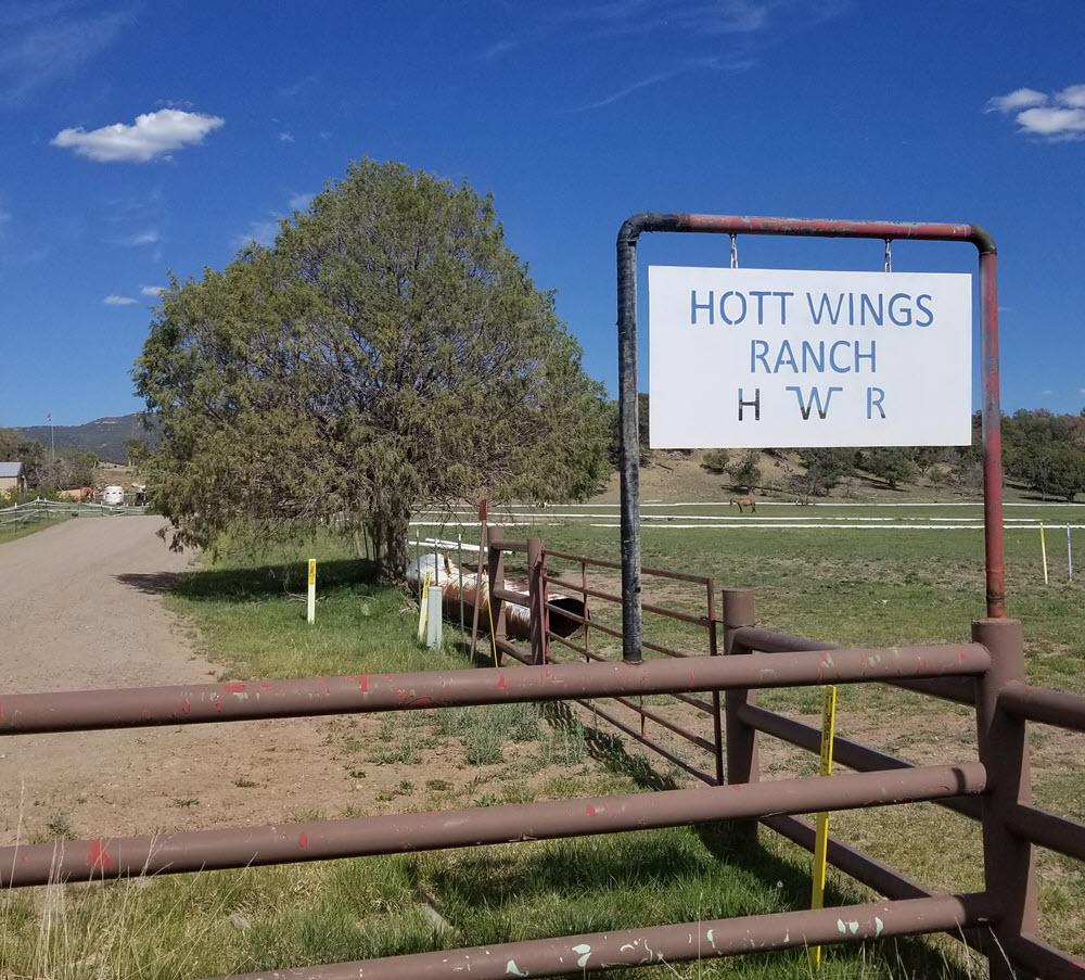 hott wings ranch